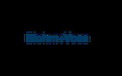 Logo Blohm + Voss