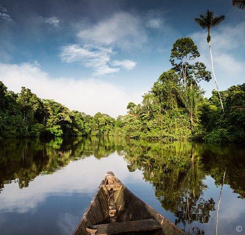 100 Tage Amazonien