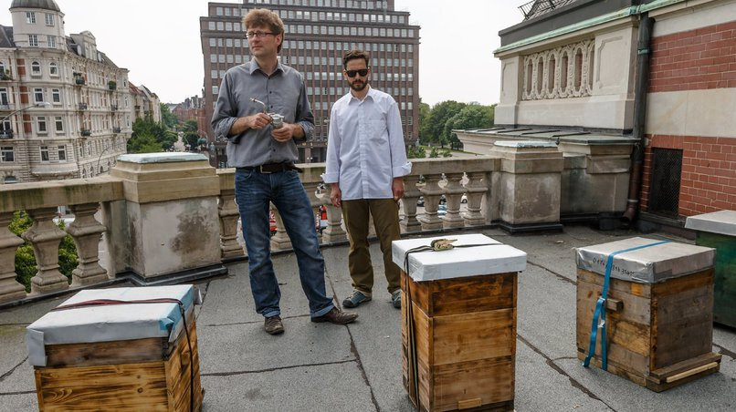 Andreas Sterr (r) and Gunnar Weidt with their bee hives