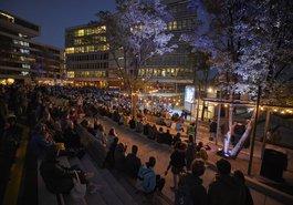 Elbphilharmonie Concert Cinema