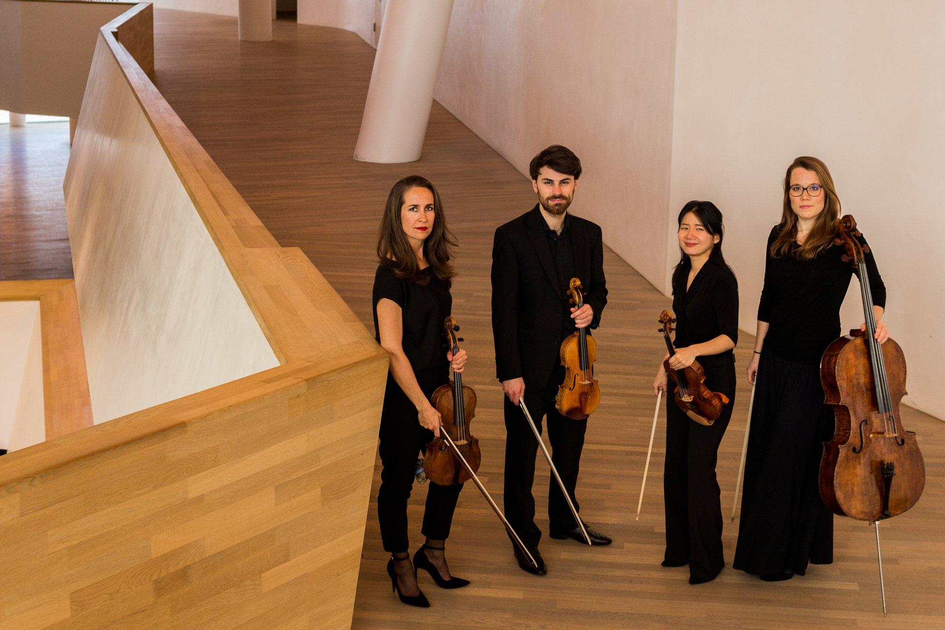 Ndr Mediathek Elbphilharmonie