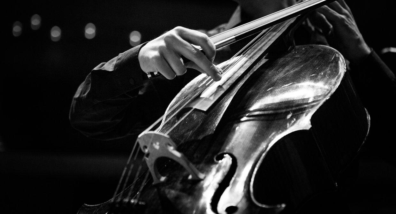 Cello / Daniel Müller-Schott