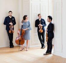 Stradivari-Quartett